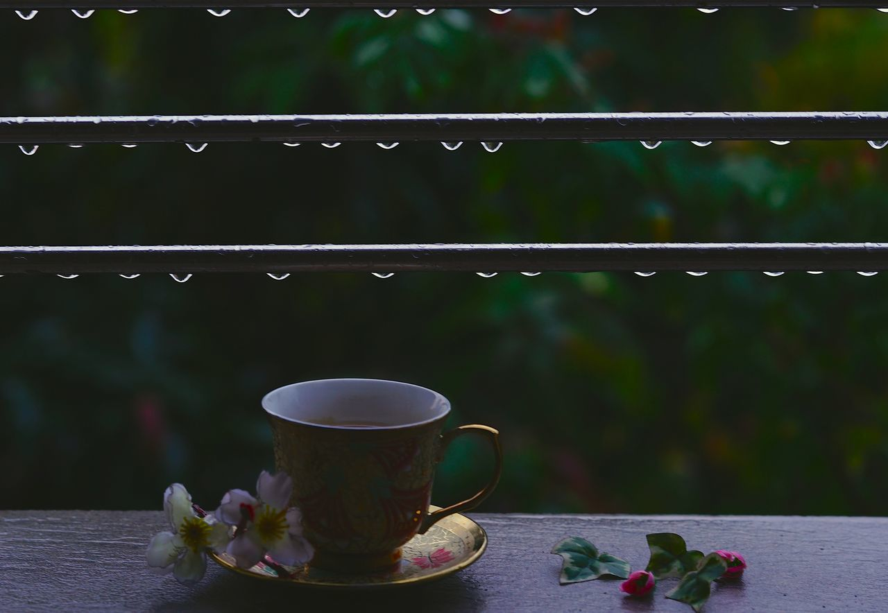 Beauty In Nature Close-up Cup Day Drink Flower Food And Drink Freshness Healthy Eating Heat - Temperature Indoors  Japanese Tea Cup Leaf No People Raining Rainy Day Refreshment Rin Drop Saucer Tea - Hot Drink Tea Ceremony Tea Cup