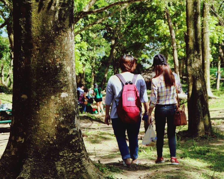 Casual Clothing Walking Women Nature Tree Day Tree Trunk Outdoors Leisure Activity Like4like Clear Sky Beauty In Nature Leaves Plant Nature Bird Branch Forest Leaf Philippinesphotography Philippines Tagaytay City likeforlike #likemyphoto #qlikemyphotos #like4like #likemypic #likeback #ilikeback #10likes #50likes #100likes 20likes likere Like For Likes
