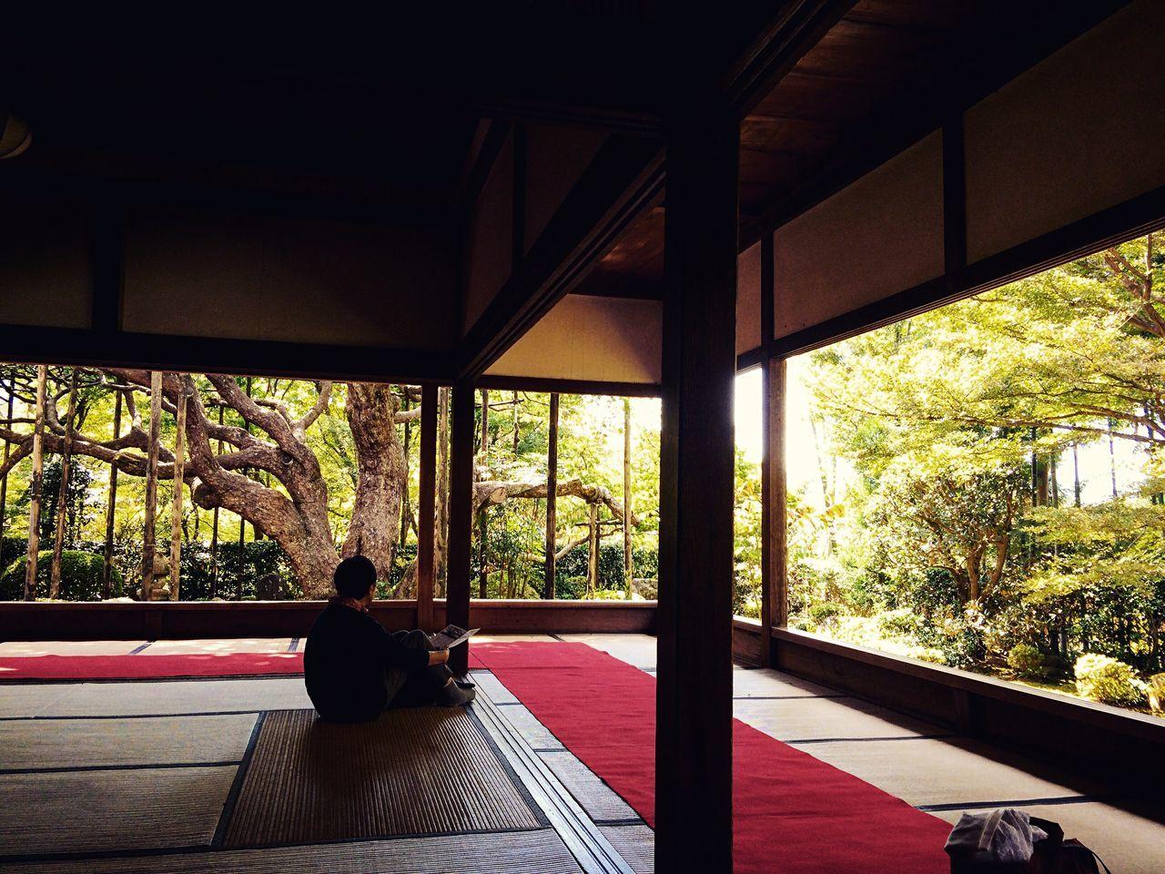 宝泉院 大原 京都 Kyoto Kyoto, Japan 2015  Relaxing Hello World Kyoto Garden Japanese Garden Travel Travel Destinations Kyototravel Enjoying Life