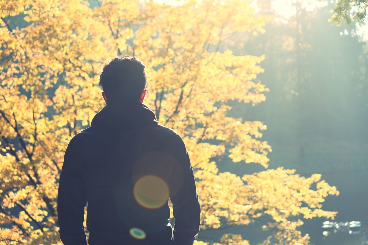 Rear View Silhouette Tree Yellow One Person Nature Outdoors Real People Men Sky Beauty In Nature Day One Man Only Autumn Autumn Colors Autumn🍁🍁🍁 Autumn Collection Person People People Photography Peoplephotography My Love My Man Silhouette Fall