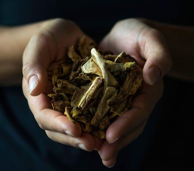 Dried Porcini mushrooms Human Body Part Human Hand One Person Close-up Indoors  Day Wealth Taking Photos Photoblogger Healthy Eating