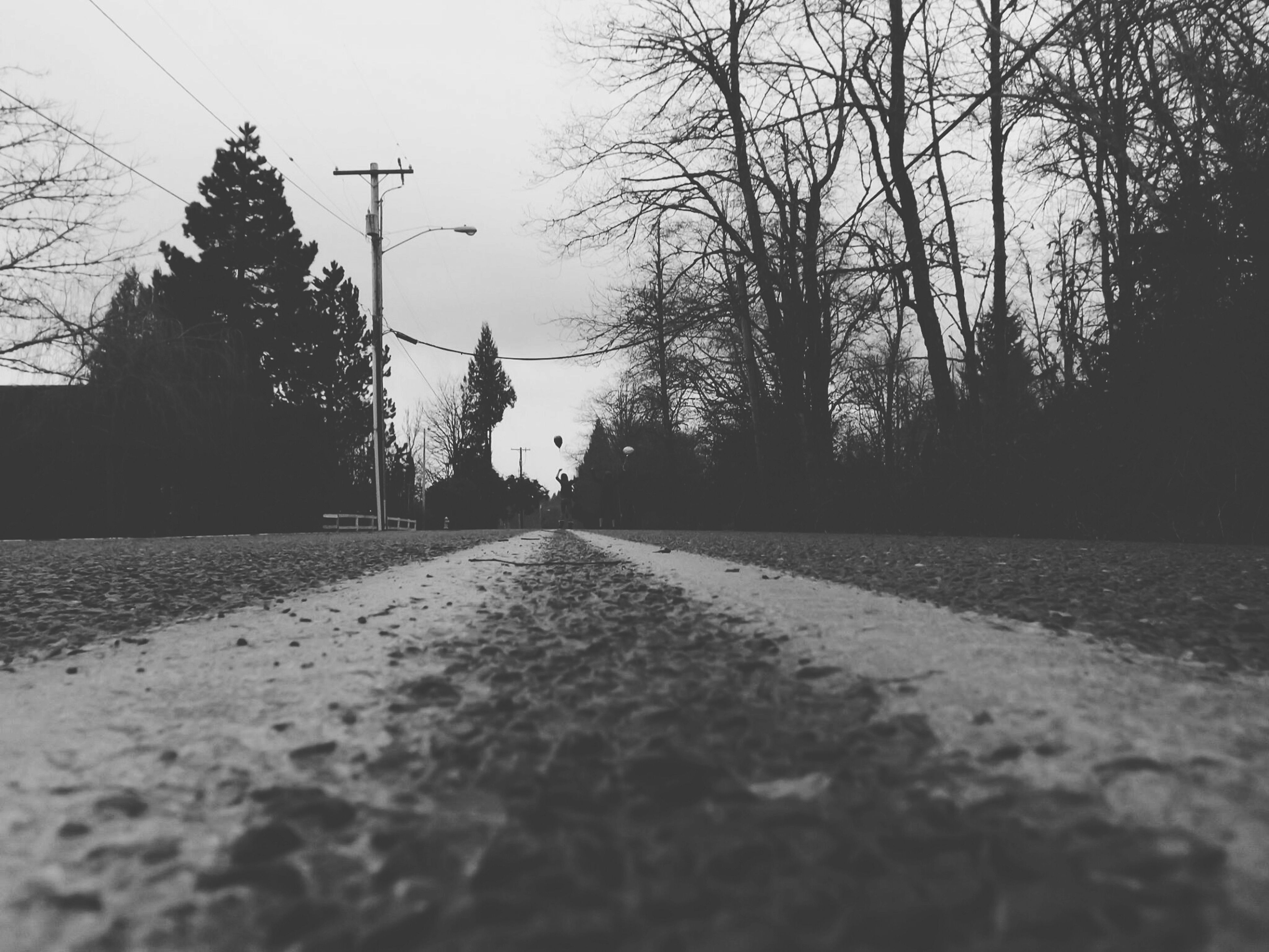 the way forward, bare tree, tree, road, clear sky, street, diminishing perspective, surface level, transportation, sky, vanishing point, building exterior, built structure, architecture, outdoors, silhouette, no people, nature, asphalt, long