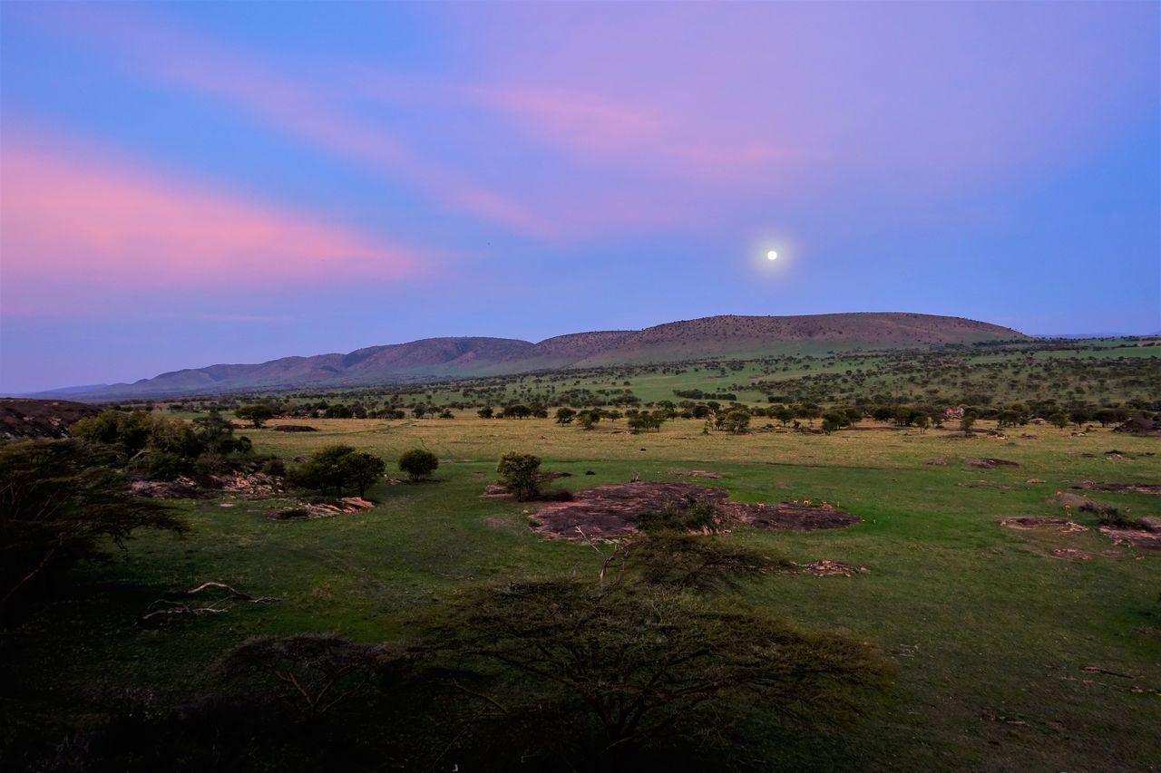 Serengeti Beauty In Nature Grass Landscape Leisure Activity Lobo Hills Mountain Nature Night No People Outdoors Scenics Serengeti National Park Sky Sunset Tree