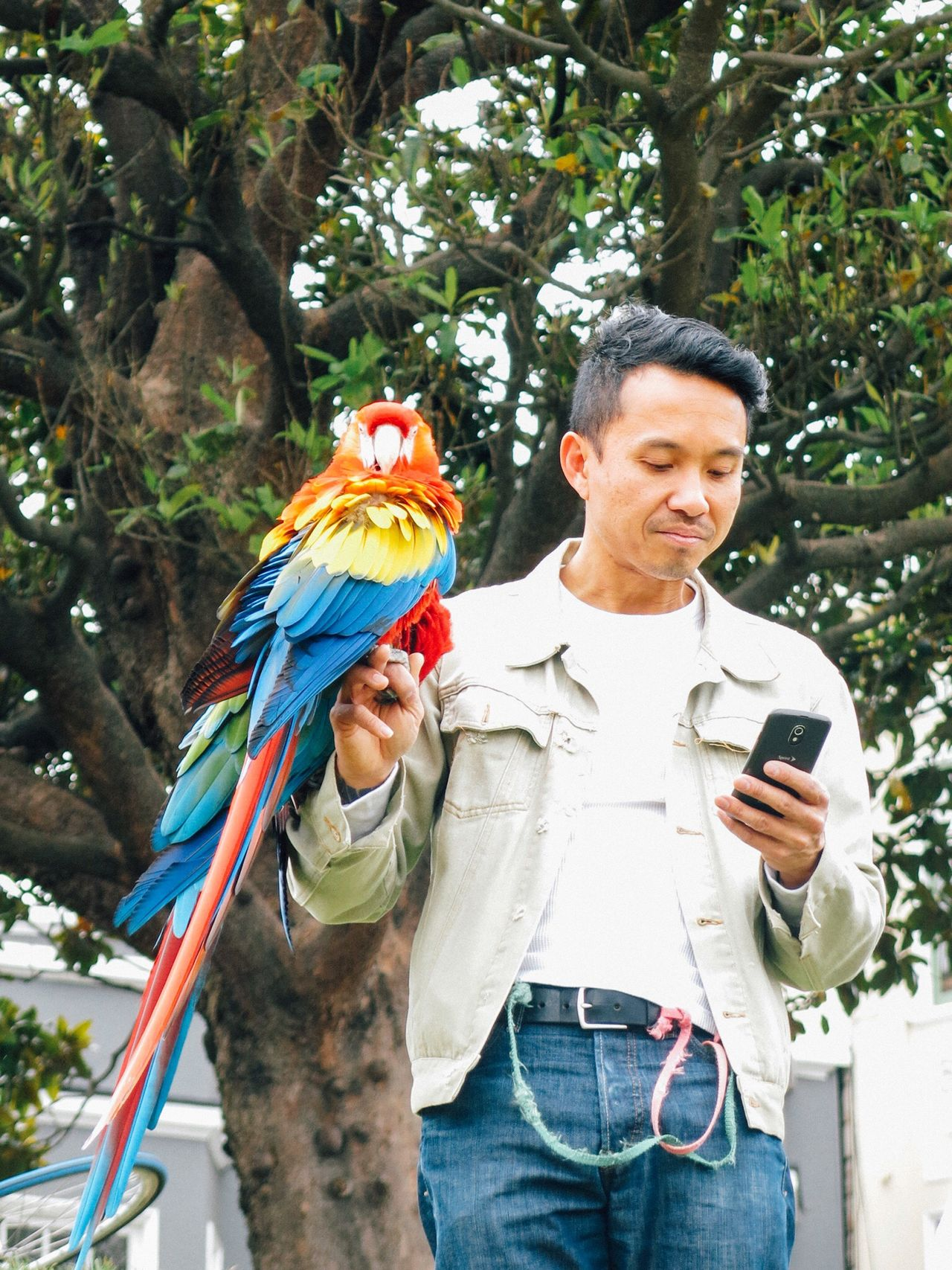 The guy with the bird... Dolores Park San Francisco People Watching Texting Eye4photography  RePicture Masculinity Picturing Individuality Bird Animal Themes Multi Colored Snap a Stranger Mobile Conversations