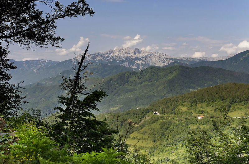 Beauty In Nature Day Landscape Montenegro Mountain Mountain Range Nature No People Outdoors Range Scenics Sky Tara National Park Tara Valley Tree