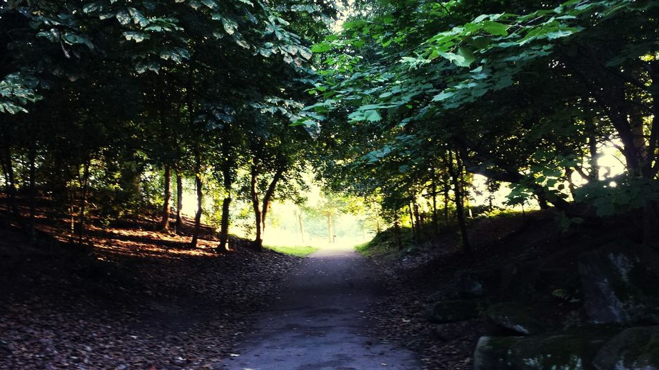 Trees Mobilephotography Nature Photography The beautiful Birkenheadpark The park CentralPark was based on