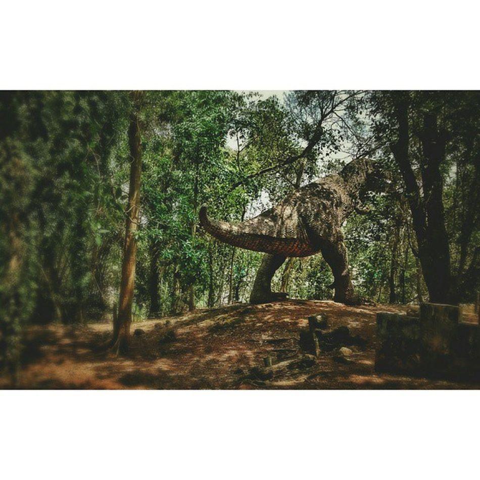 Spotted! Hillpalazosaurus Thripunithra Hillpalace Dinosaur Hillpalacemuseum Kochi Wild Motog Forest Green Jurassic Jurassicpark Fibreglass Fibre Model Twilight