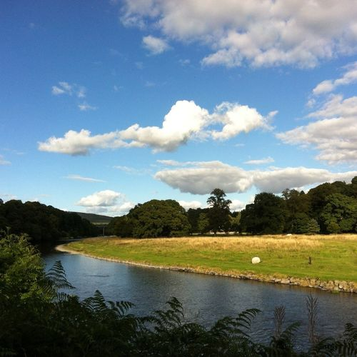 Banks of the River Tweed MobileSky