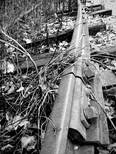 Abandoned Railroad Tracks Railroadphotography Railroad Love Railroad Ties Railways_of_our_world Black & White Black And White Photography Black And White Collection  Shades Of Grey