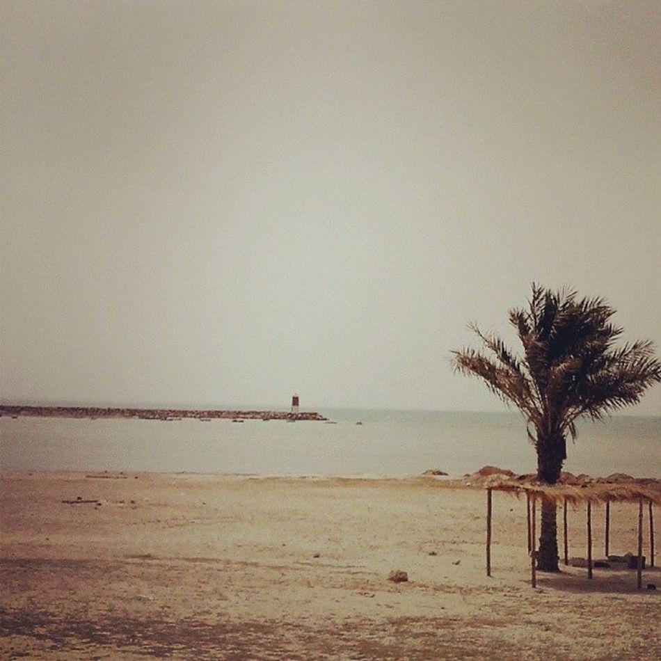 Live Djerba  Aghir Tunisie tunisia tunez 36°C