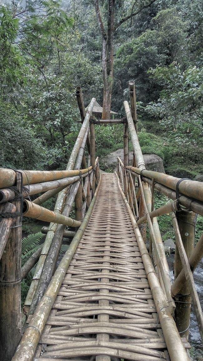 Bamboo bridge in java island Hanging Out Taking Photos Enjoying Life EyeEm Check This Out Bamboo Java Bridge Island Life Traditional Vintage Forest River Nature First Eyeem Photo