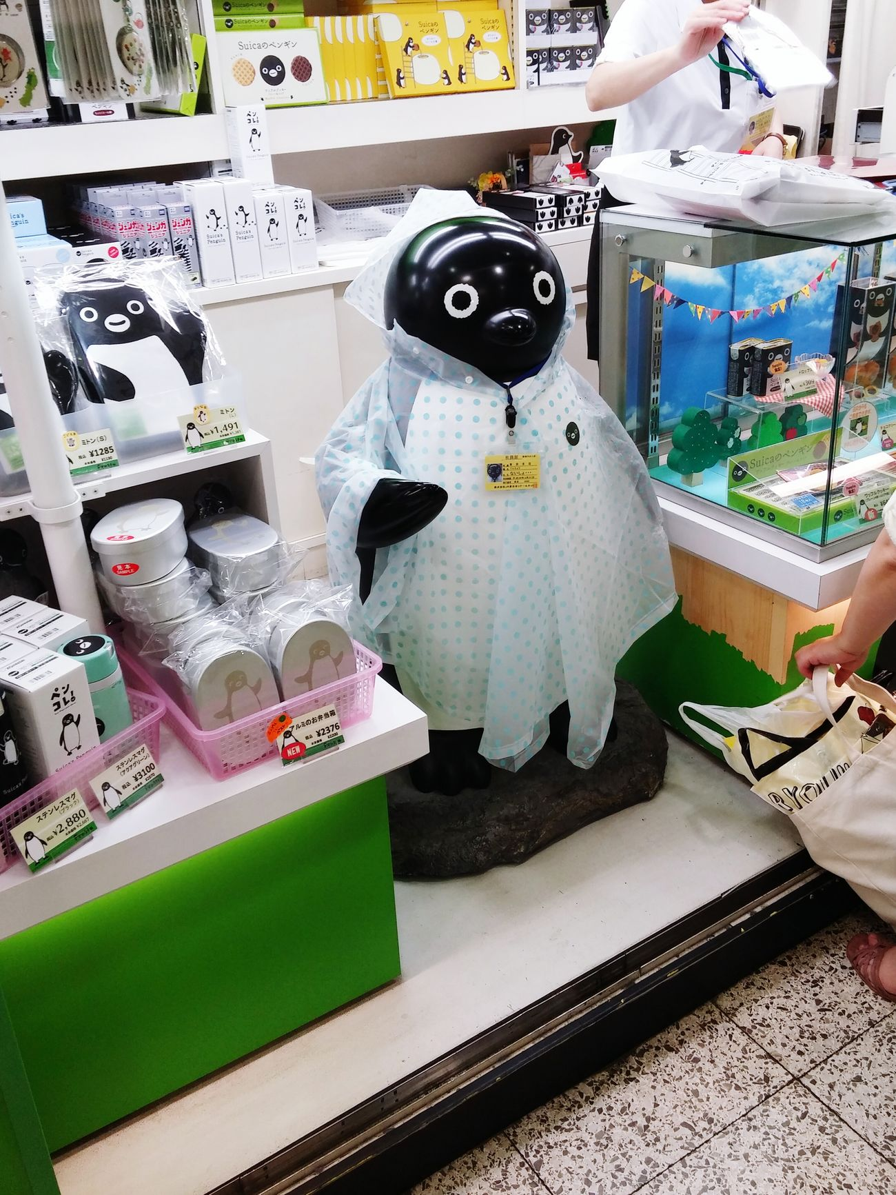Suicaペンギン Cuteness Visual Merchandising EyeEm Japan