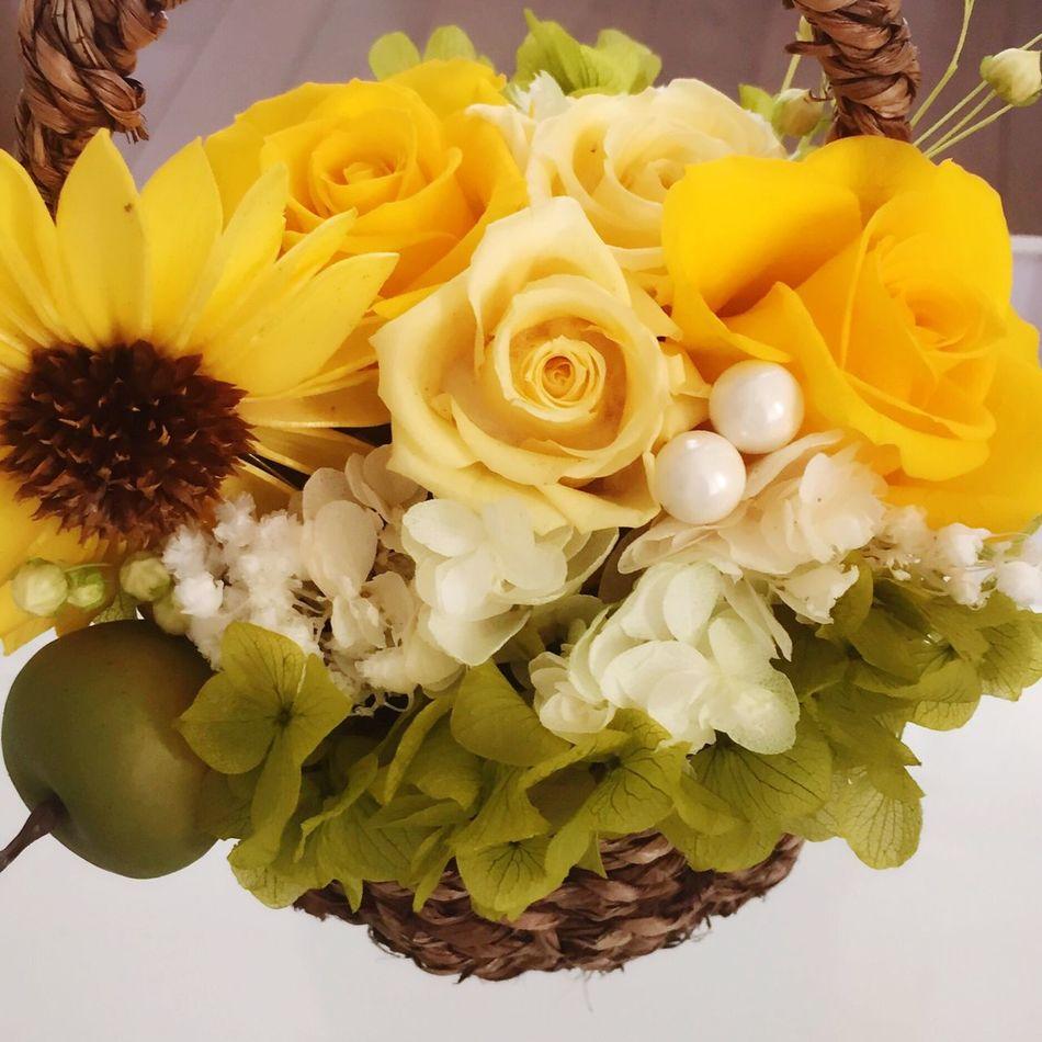 Flower Yellow ブリザードフラワー 花 趣味 趣味