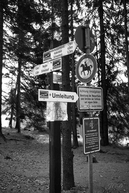 #B&W #blackandwhite #hiking First Eyeem Photo