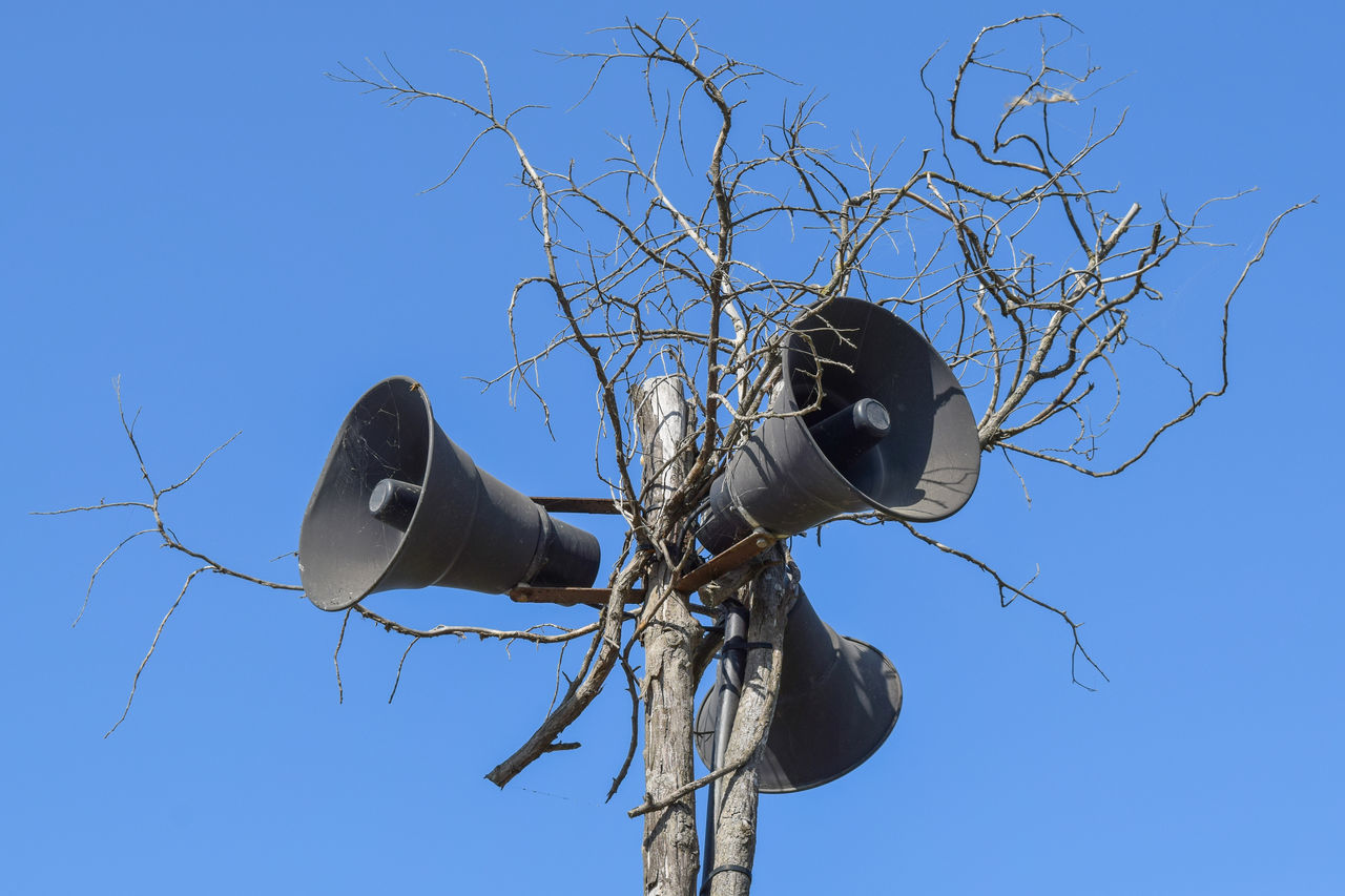 Audio Equipment Bare Tree Blue Cable Clear Sky Communication Connection Day Low Angle View Microphone No People Outdoors Sky Speaker Technology