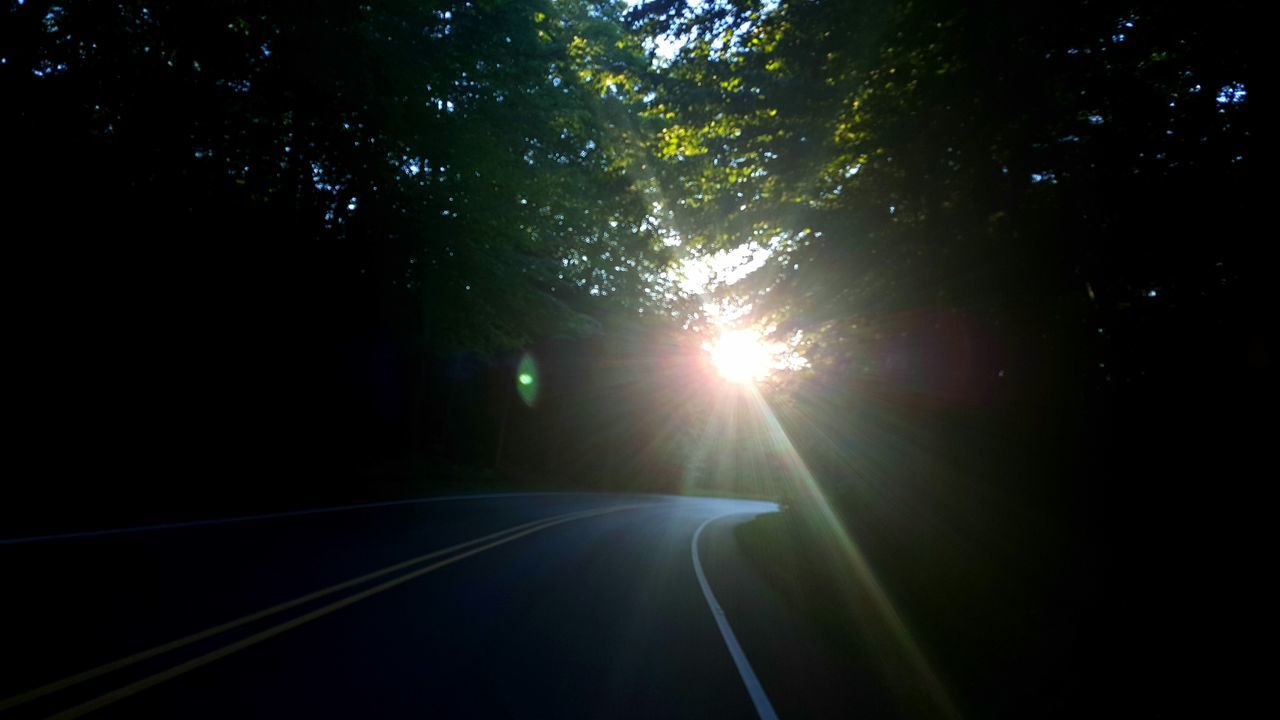 Scenic Drive Scenic Road Travel Curvy Road Sunlight Forest Driving Mein Automoment Road Trees Summer Michigan