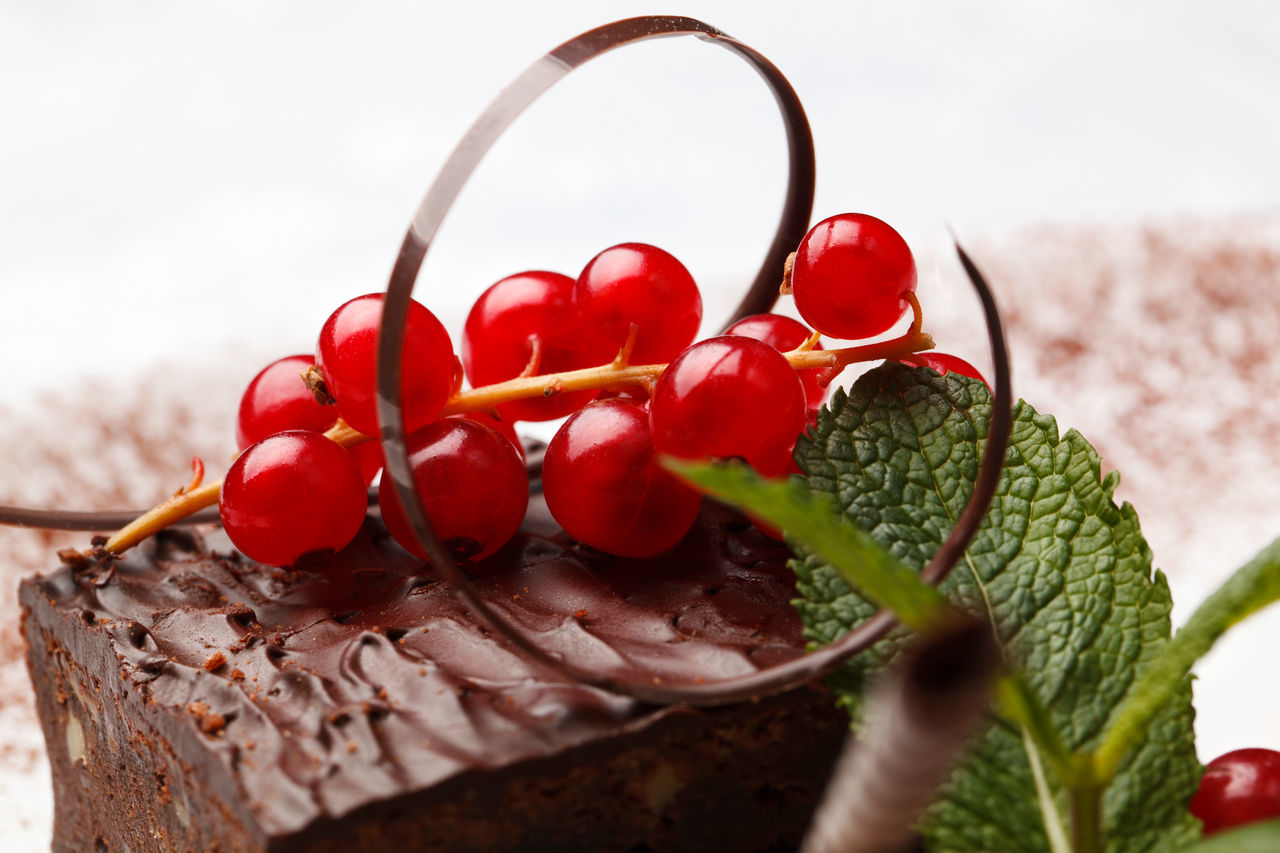 Close-Up Of Chocolate Cake With Red Current