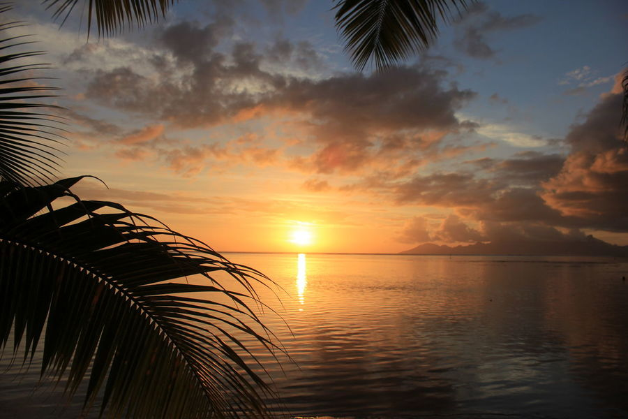 Sunset in French Polynesia French Polynesia Sunset Tahiti Tropical Paradise
