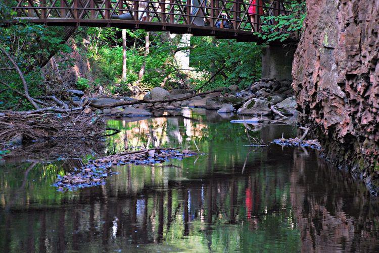Tischer Creek Walking Bridge Hiking Trail City Parks