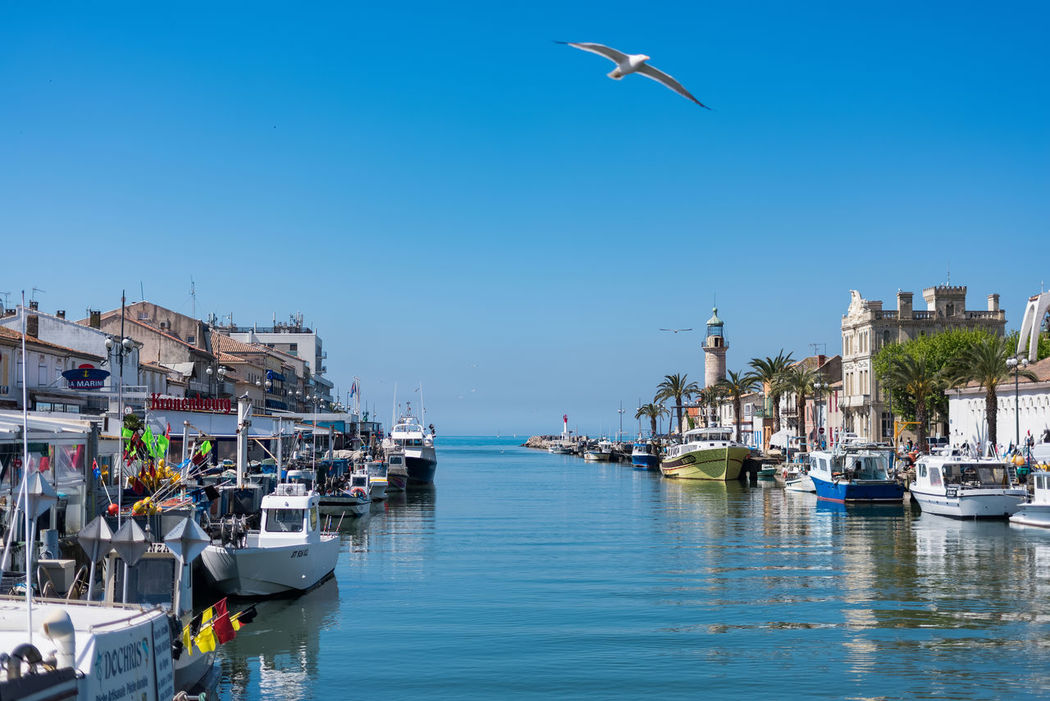 Harbor in South France. Oceanside Traveling Architecture Bird Blue Boat Boats Built Structure Clear Sky Day Flying Harbor Mid-air Mode Of Transport Nature Nautical Vessel One Animal Outdoors Real People Sea Transportation Travel Destinations Water Waterfront Yacht