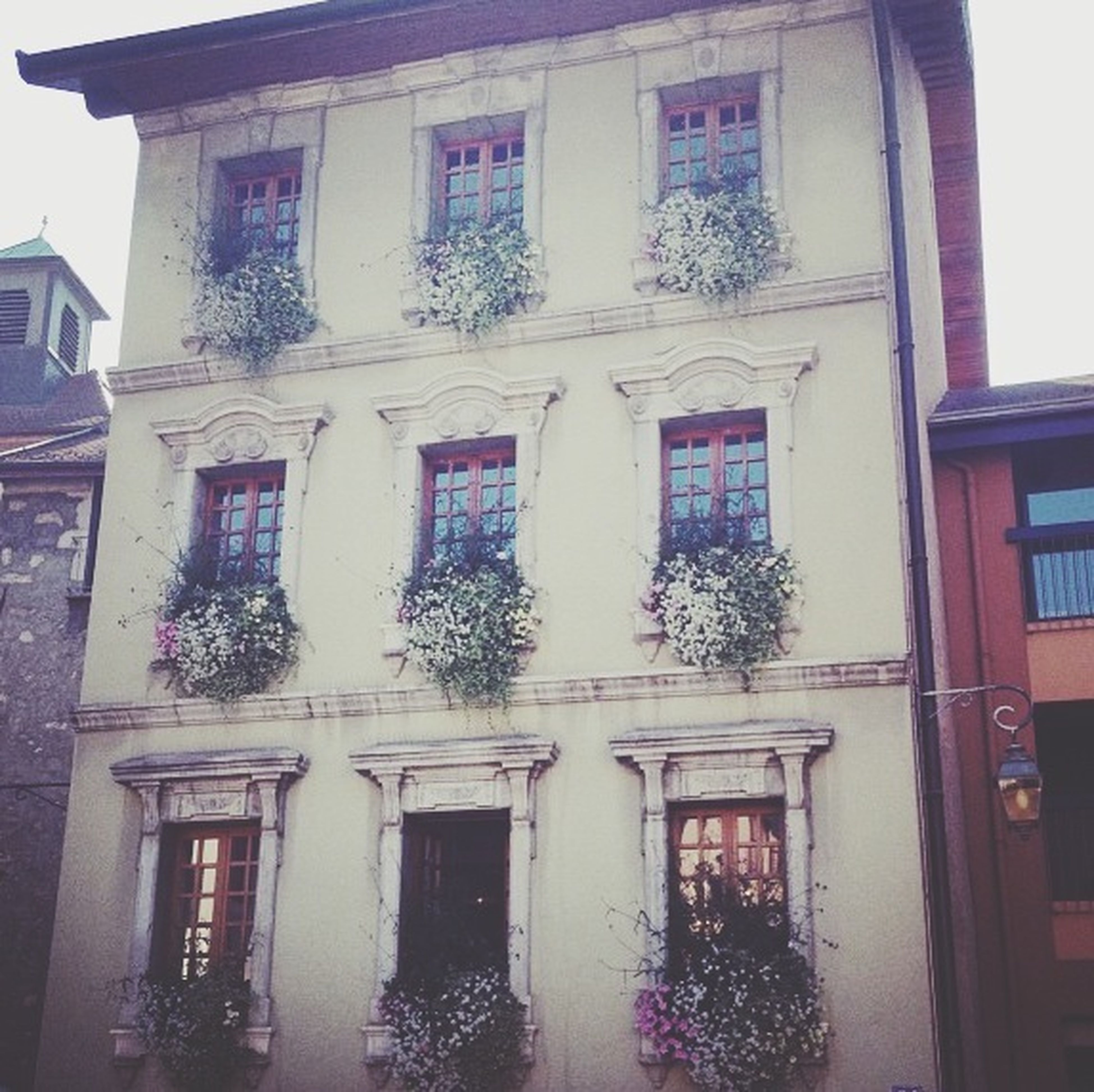 architecture, building exterior, window, built structure, low angle view, house, residential building, building, residential structure, facade, potted plant, balcony, day, glass - material, no people, plant, outdoors, decoration, growth, tree