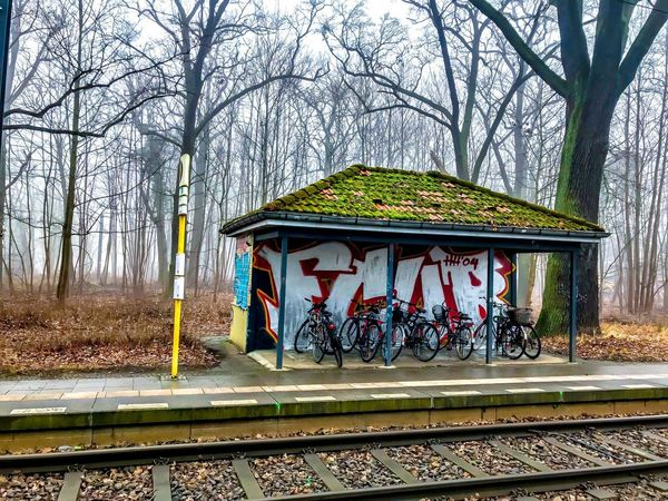 Trainstation Tram Foggy Days  Foggy Railroad Track Tree Transportation Rail Transportation Day Outdoors Nature No People