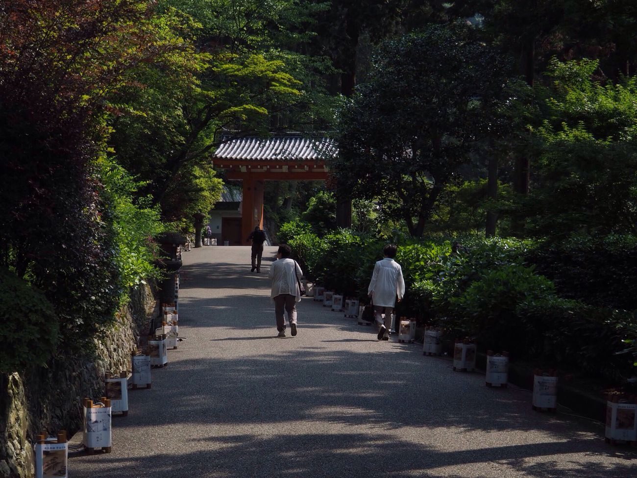 Kyoto Japan Uji Mimurotoji Temple Gate Architecture Day People Beauty In Nature Green Healing Walking Tree Outdoors Nature Olympus PEN-F 京都 日本 宇治 三室戸寺