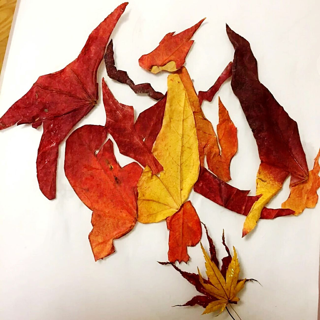 Repost. Credits to the owner. A Dragon made in leaves. Artsy Art Art, Drawing, Creativity Art Gallery Nature Nature_collection Dragon Phoenix Red Fire Nation Fire