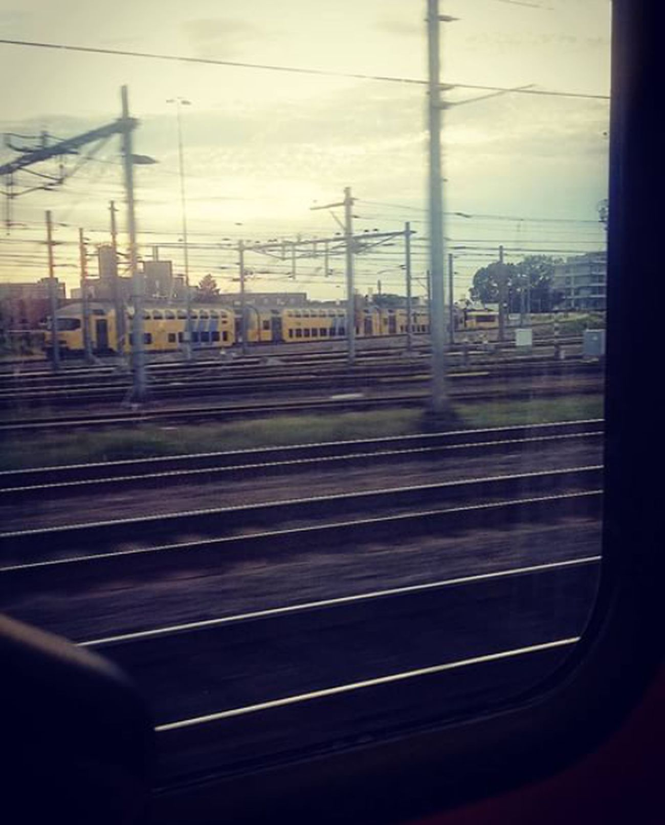 Commuting Public Transportation Train Going Home Trainride Maastricht Streetphotography Fresh On Eyeem  Railroad Track Railway Railroad Station Railway Station On The Way