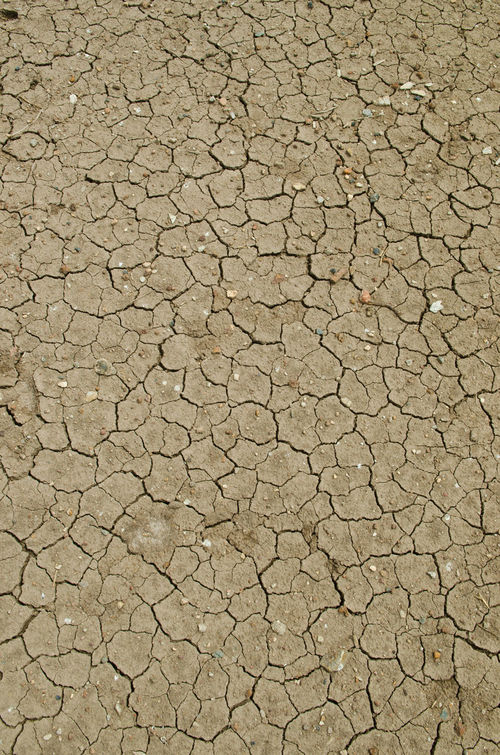 Pattern of cracked and dried soil Abstract Backgrounds Cracked Day Dehydration Dry Environment Environmental Issues Full Frame Ground Landscape Mud Nature No People Outdoors Parched Soil On The Ground Textured