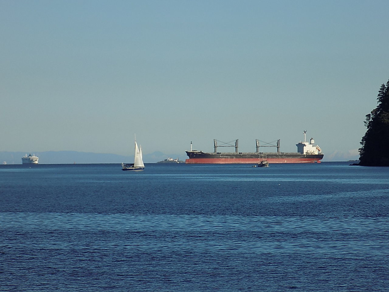 Ships passing. Nautical Vessel Business Finance And Industry Sea Transportation Industry Clear Sky Sky No People Water Outdoors Sailing Ship Outdoor Pictures EyeEmNewHere Canada 150 Vancouver Island Canada Nanaimo BC Cargo Ship