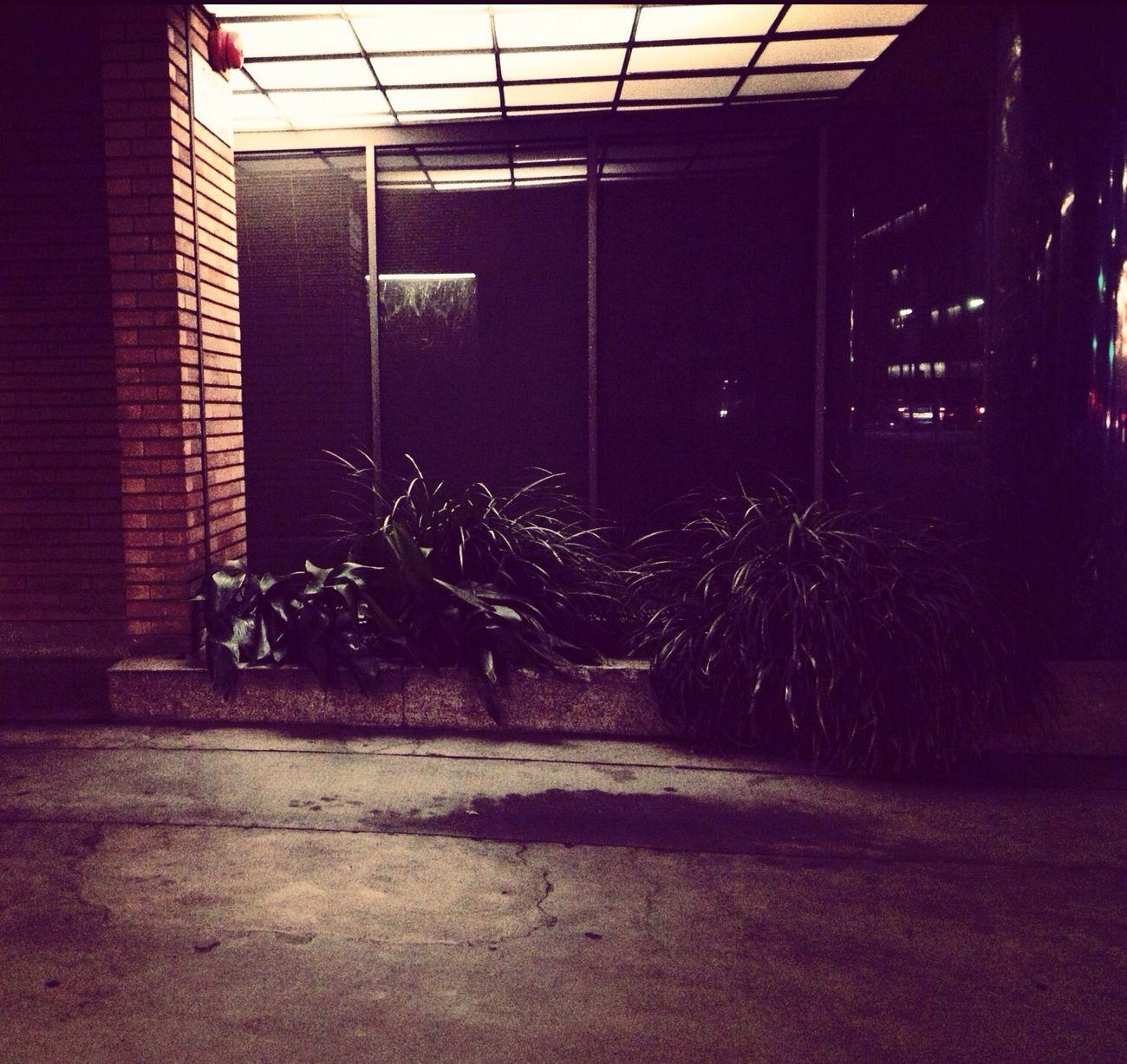 Doorway Lights in Los Angeles Doorway Lights