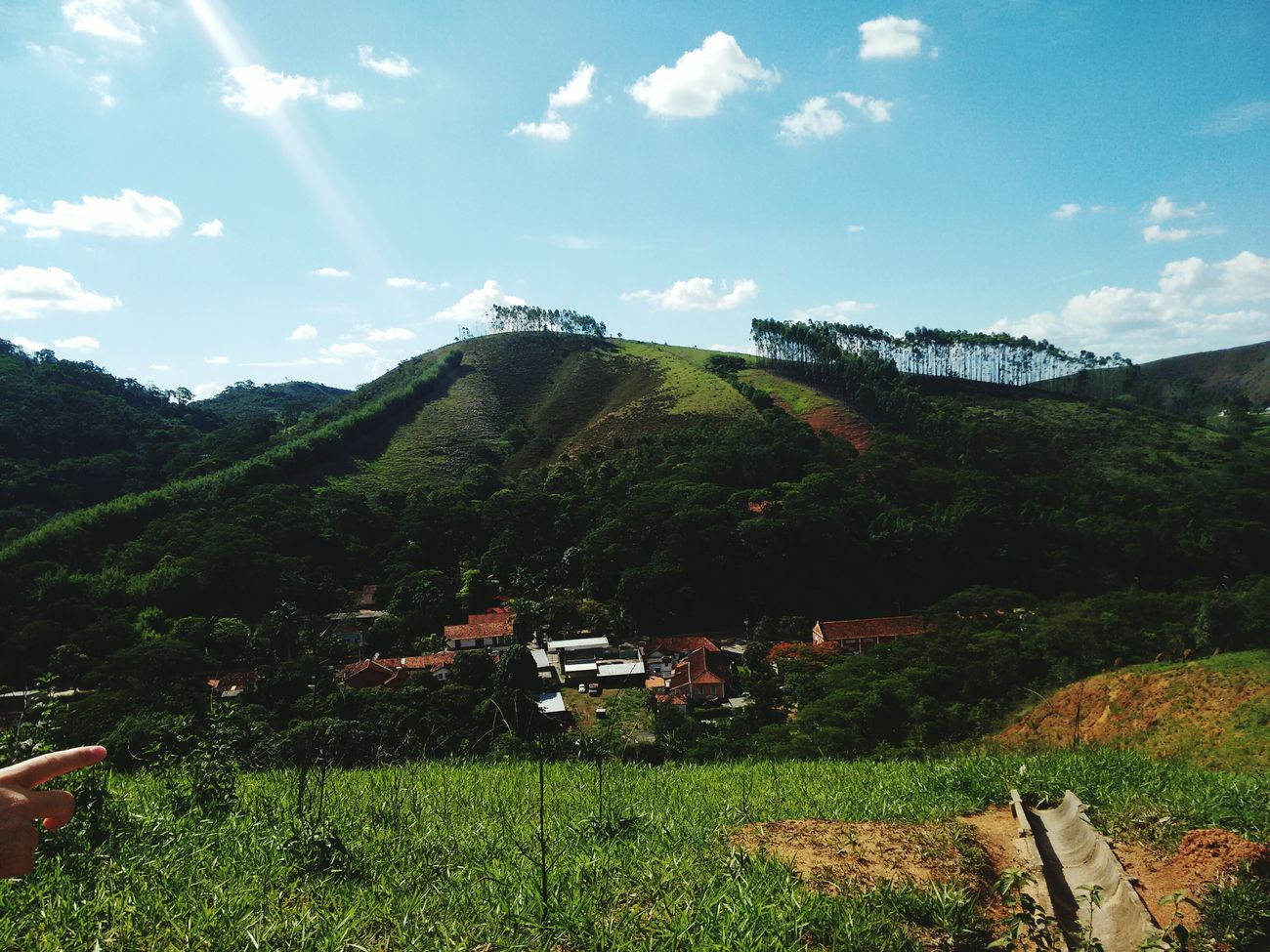 Nature Photography Cruzeiro