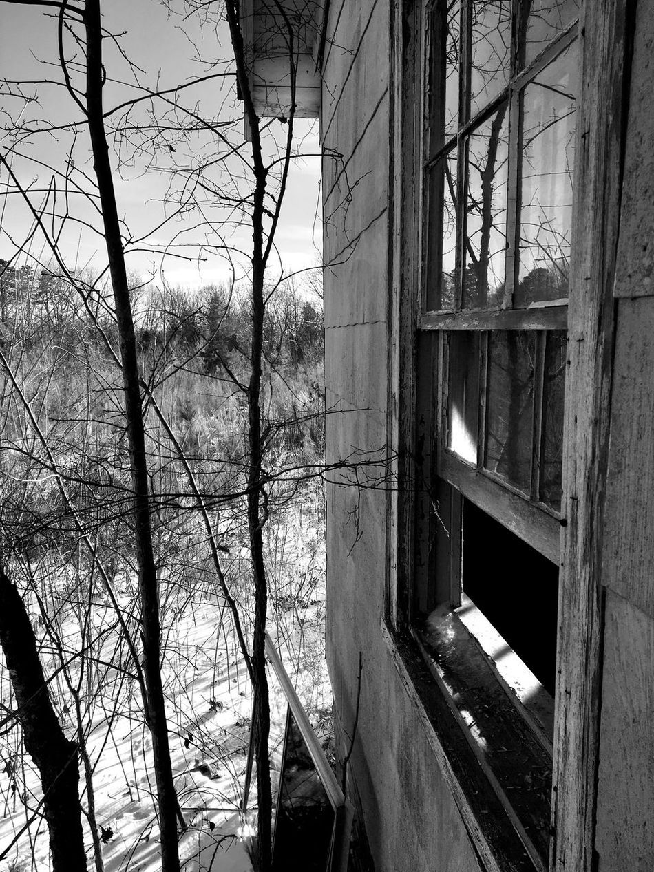 Built Structure Architecture No People Abandoned Tree Bare Tree Day Building Exterior Outdoors Nature Sky Blackandwhite Broken Glass Abandoned Places Abandoned Buildings Window Broken Change