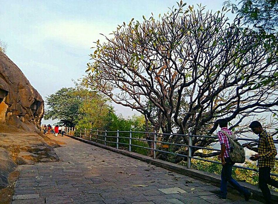 Unmeshshirsath Usphotography Treeloverforever Trees Path Relaxing Moments Adventures Trekking Way Nashik Maharashtra Pandavleni Morning Light