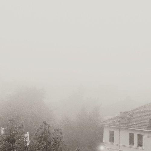 Fog Day Sepia Effect No Photoshop