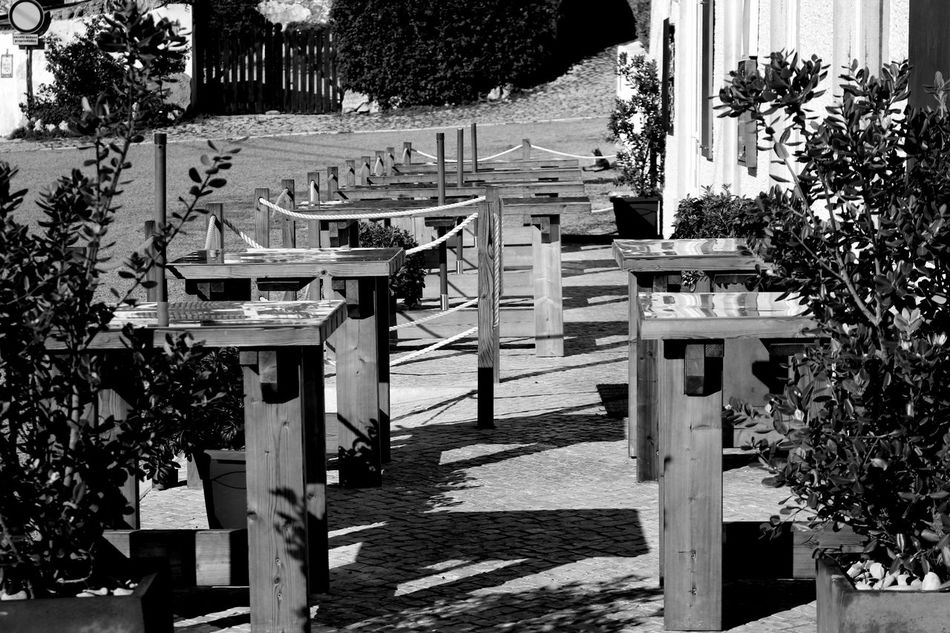 Architecture Arrangement Benches Black & White Black And White Bnw Building Exterior Built Structure City Close-up Day Growth In A Row Light And Shadow No People Outdoor Restaurant Outdoors Plants Restaurant Table Tables Terrace The City Light Tree Wood - Material
