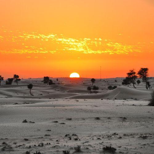 Desert GetYourGuide Cityscapes Sky Dubai