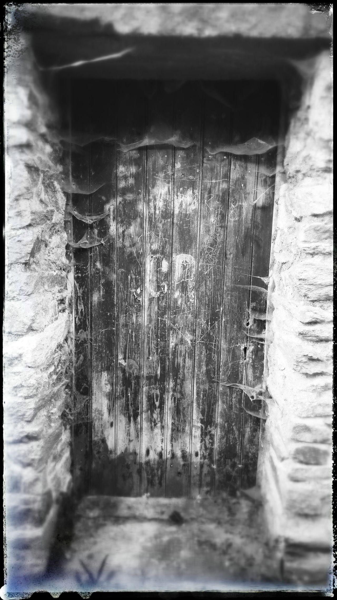 Haloweendoor Spidersweb Wooden Door Freaking Out a locked wired freaking wooden door..best start to feel the Haloween spirit