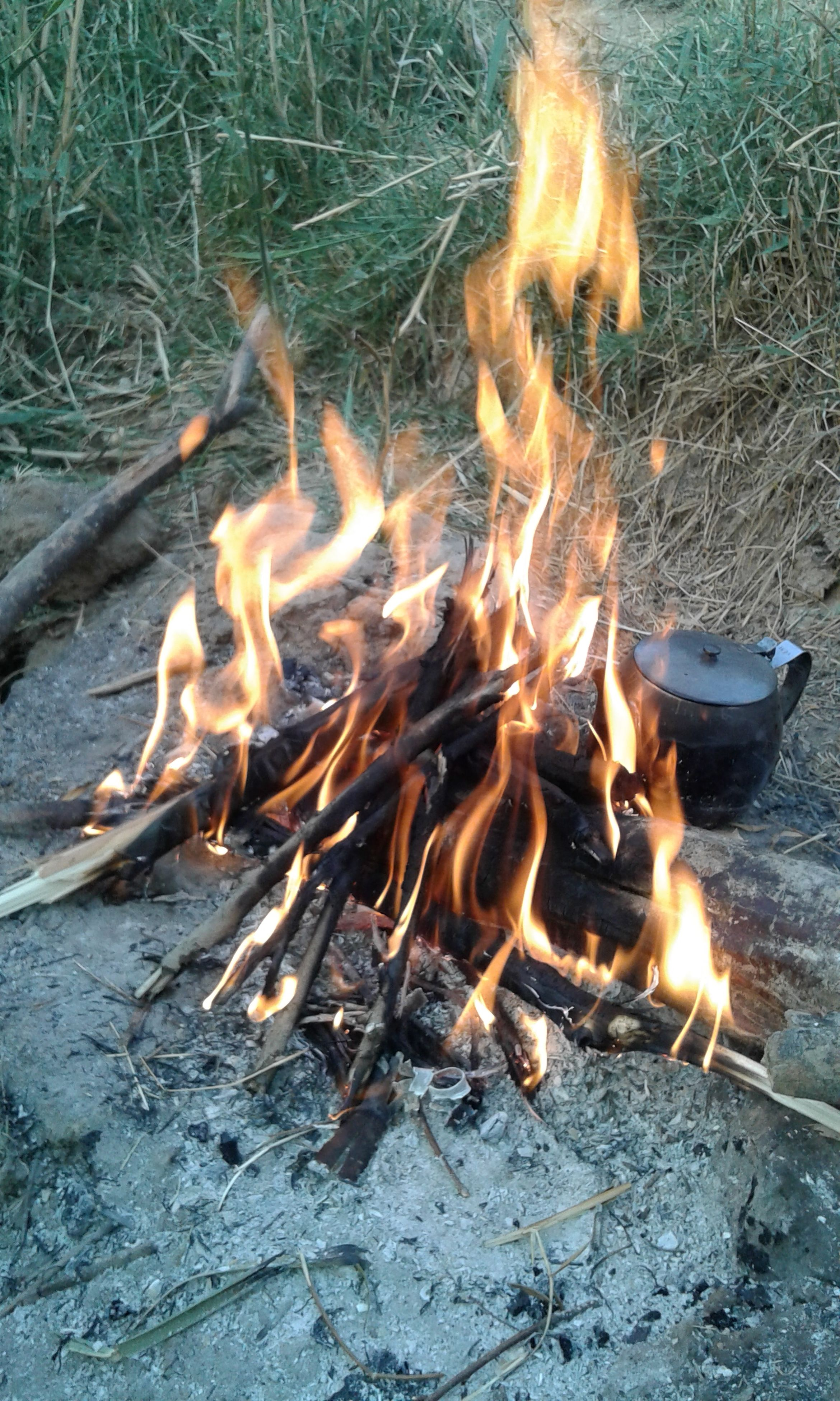 burning, flame, heat - temperature, fire - natural phenomenon, close-up, glowing, motion, bonfire, firewood, outdoors, field, campfire, no people