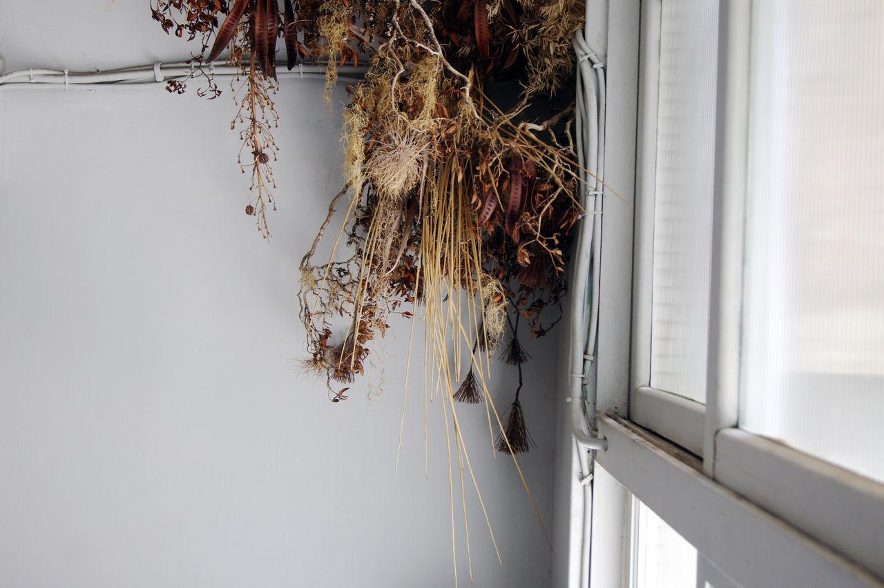 台南老街裡,正上演著關於藝術家新作品發表,來參與的人們,有些在一樓靜靜的欣賞著作品,一些則在二樓喝著茶 或 咖啡,想著,就這樣吧,時間就停留在這吧。 More Detail:https://goo.gl/XZGwaI Detail Dried Flowers Japanese Style Tainan Taiwan White Windows 中西區 兩倆 台南 台灣
