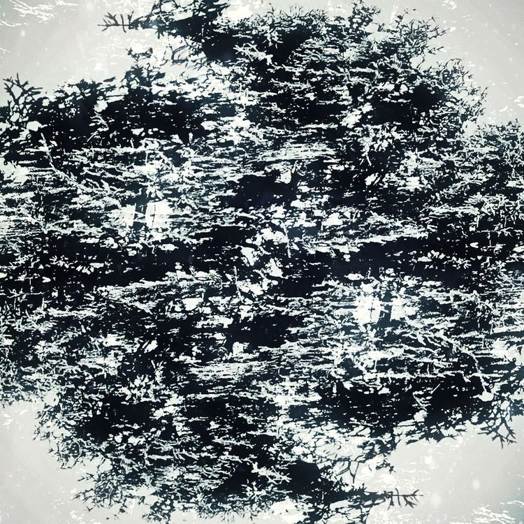 Trees Nature Nature Photography Abstract Check This Out Symmetrical Double Exposure Overlays Experiments In Double Exposure Fallowme