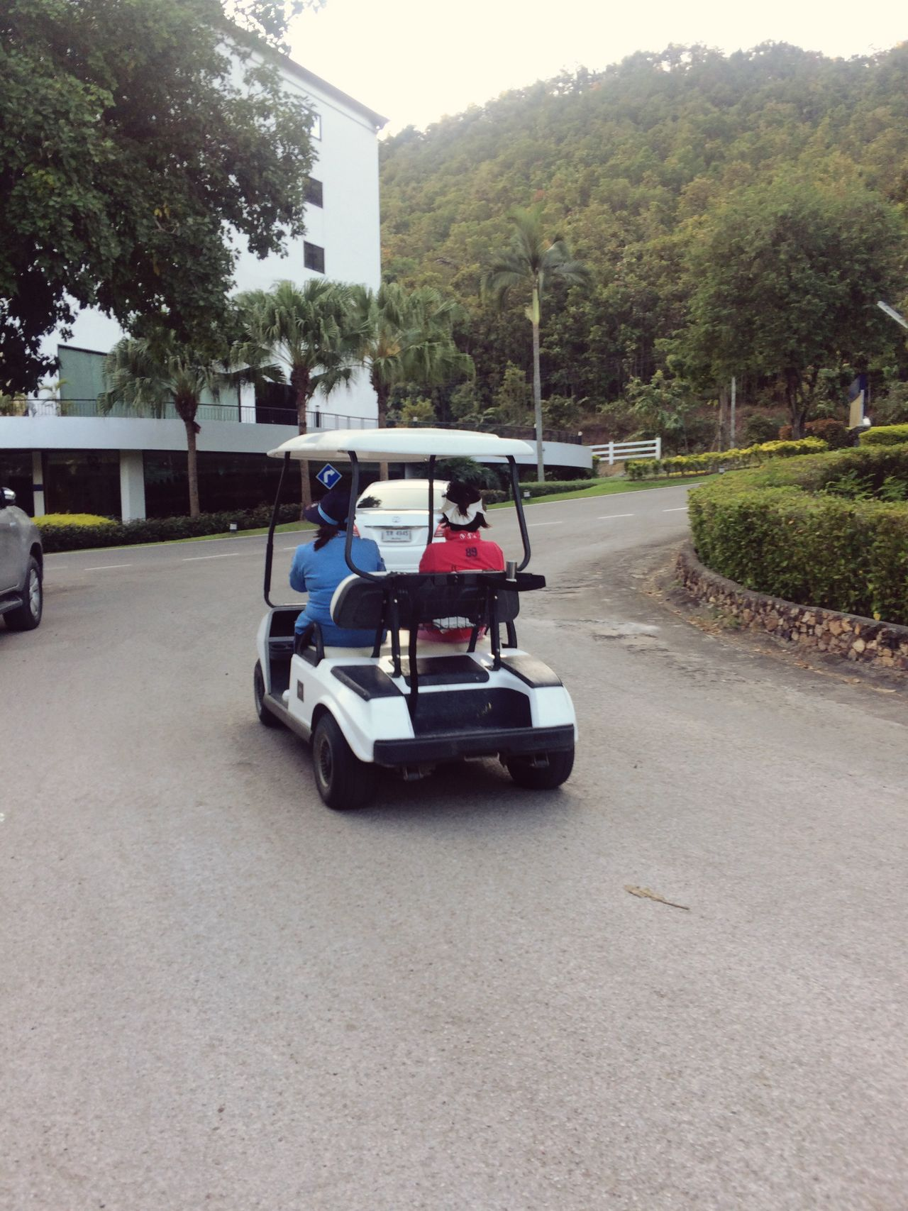 Life Is Going On Tree Two People Driving Transportation Leisure Activity Mode Of Transport Real People Sitting Land Vehicle Outdoors Day Men Headwear People Adult Golf Club