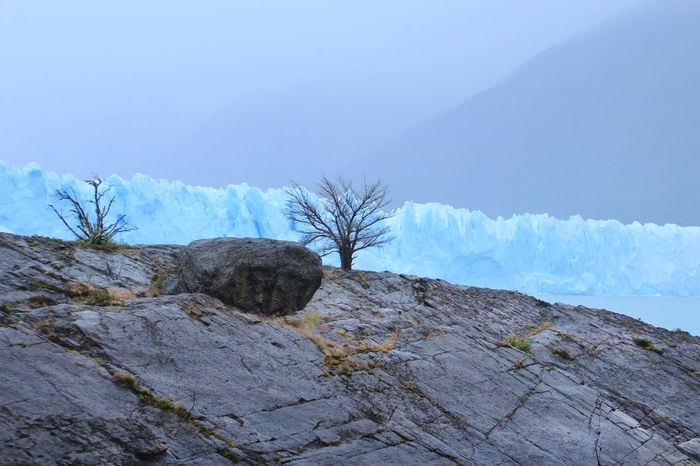 Fog Day Perito Moreno Glacier Argentina Patagonia El Calafate Perito Moreno. Patagonia. Argentina. Rock Beauty In Nature Day Glacier Glacier National Park Landscape Lonely Tree Mountain Nature No People Outdoors Rock - Object Scenics Sky Tranquility Tree