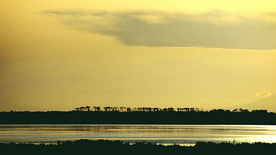 Time of gold. Hello World Taking Photos Traveling Travel Photography Landscape Landscape_Collection Sunset Wilderness Film Notsuke Peninsula