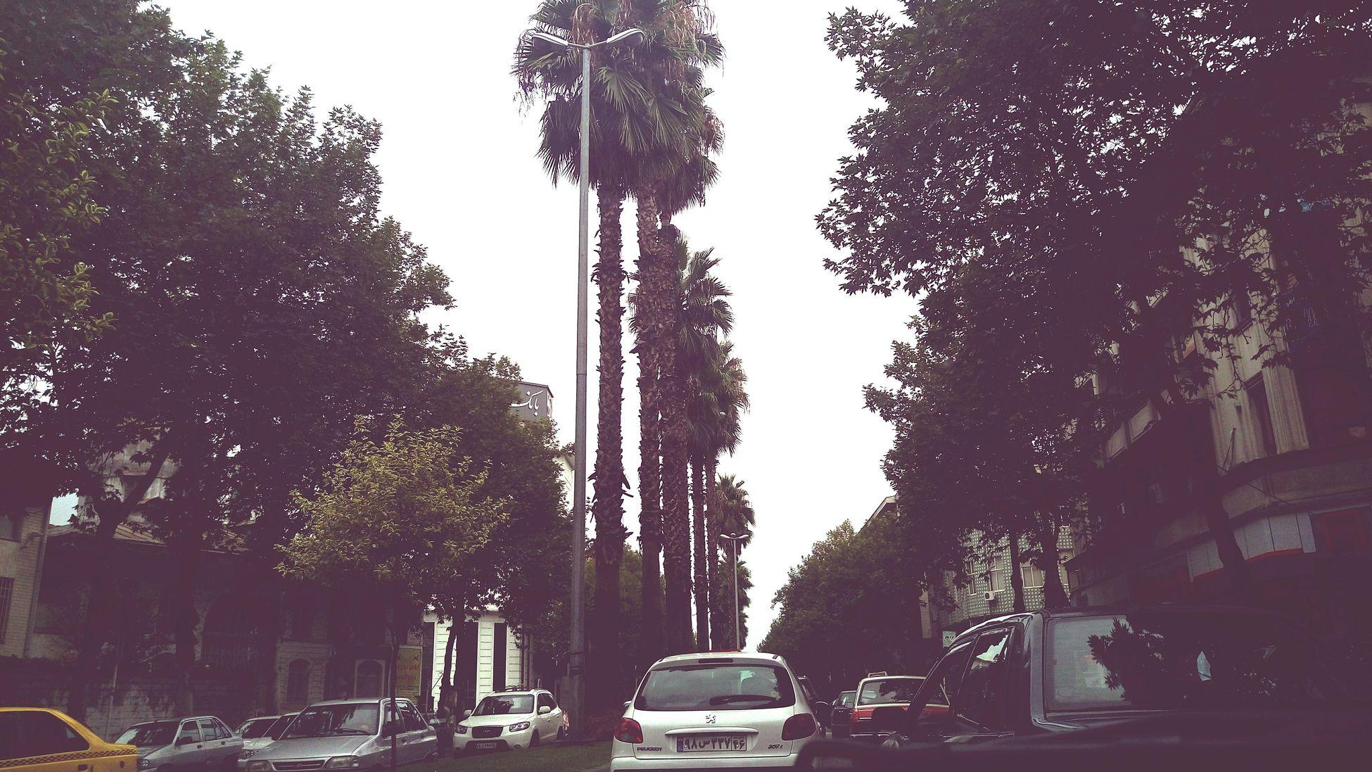 Rasht, a must visit city ❤🆒💯@ Rasht Guilan Iran ... Urban Heart Of Iran Beauty City Life Street Cosmopolitan City Northern Iran Near Caspian Sea رشت گیلان ایران