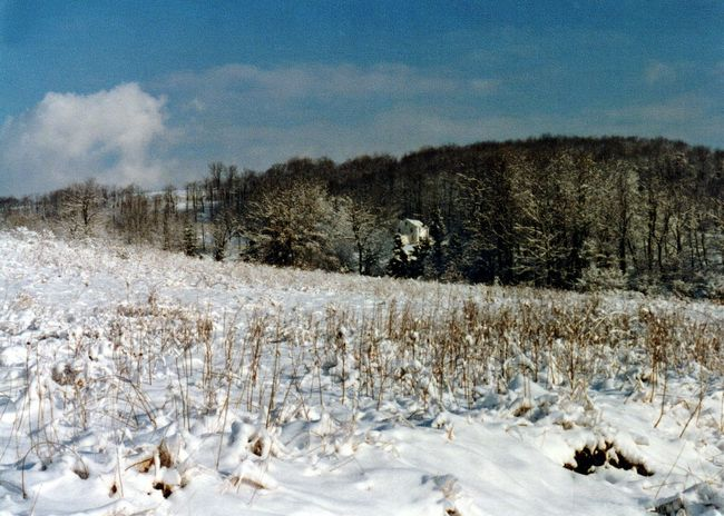 Winterscapes Winter Fields Snowymountain Snowscape Snow
