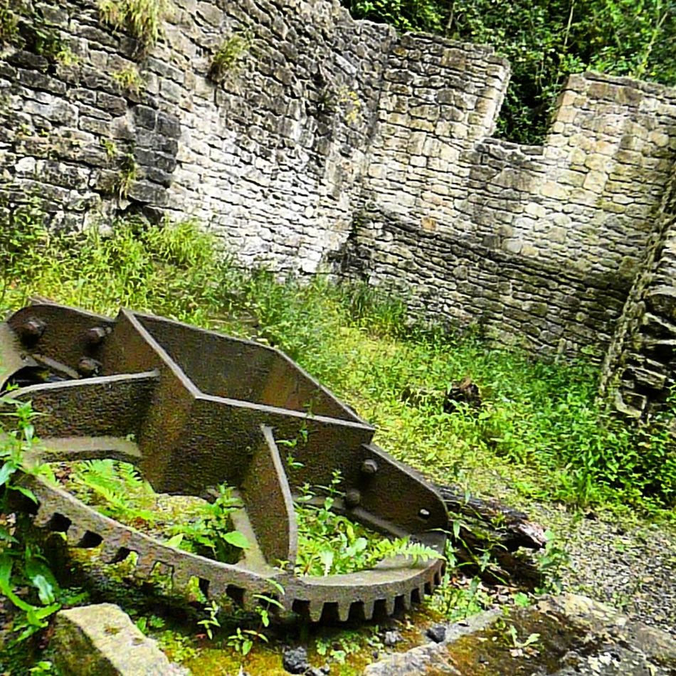 More From The Water Mill ♡