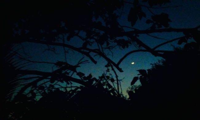 Anochecer, Tímida Luna. Anochecer Anocheciendo Moon Night First Eyeem Photo