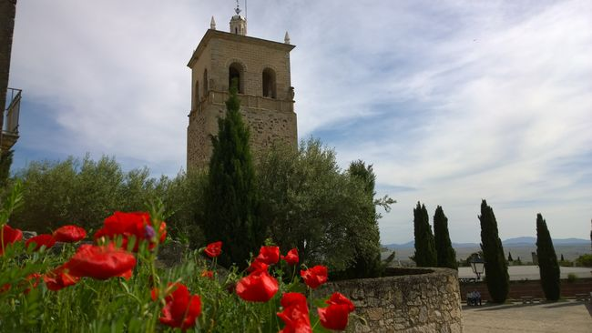 Medieval Landscape Medieval Flowers Sky Taking Photos Photography Medieval Architecture